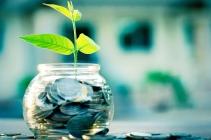 New Beginning Green Plant Bank Money.jpg